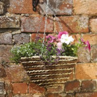 12in Harambee Hanging Basket