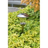 Luxform Lighting - Princeton Solar Light