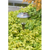 Luxform Lighting - Juneau Solar Light