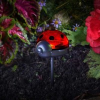 Ladybird Solar Stake Light - Triple Pack