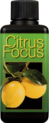 Citrus Focus Plant Food 100ml