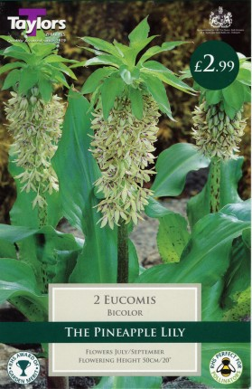 EUCOMIS BIOCOLOUR 14UP