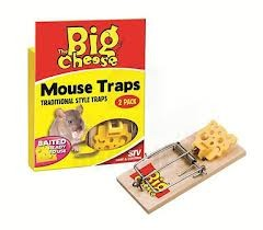 Baited Ready-To-Use Mouse Traps Twin Pack